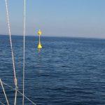 IMG 3481n 150x150 - Flaute im Haifischbecken