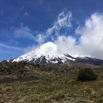 IMG 4869 150x150 - Osorno-Vulkan