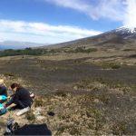 IMG 4883 150x150 - Osorno-Vulkan