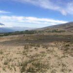 IMG 4884 150x150 - Osorno-Vulkan