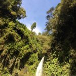 IMG 4921 150x150 - Osorno-Vulkan