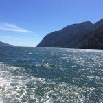 IMG 5161 150x150 - Wasser unter dem Kiel und Asada