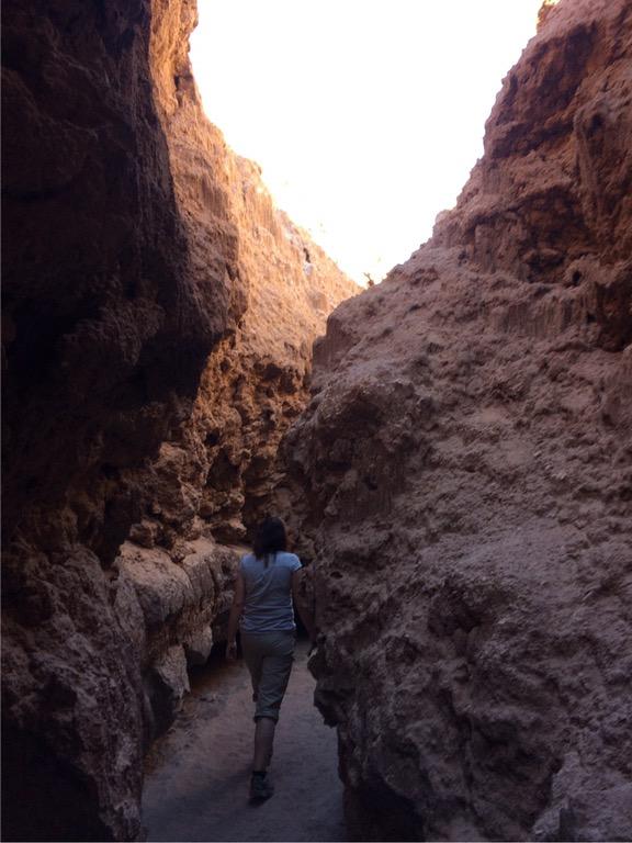 img 3858 2 - In die Wüste