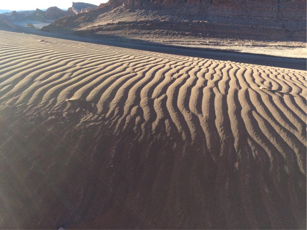 img 3864 3 - In die Wüste