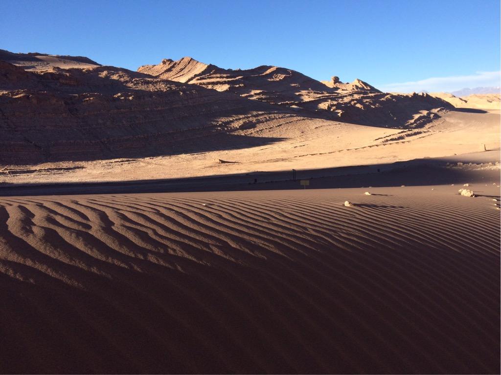 img 3869 3 - In die Wüste