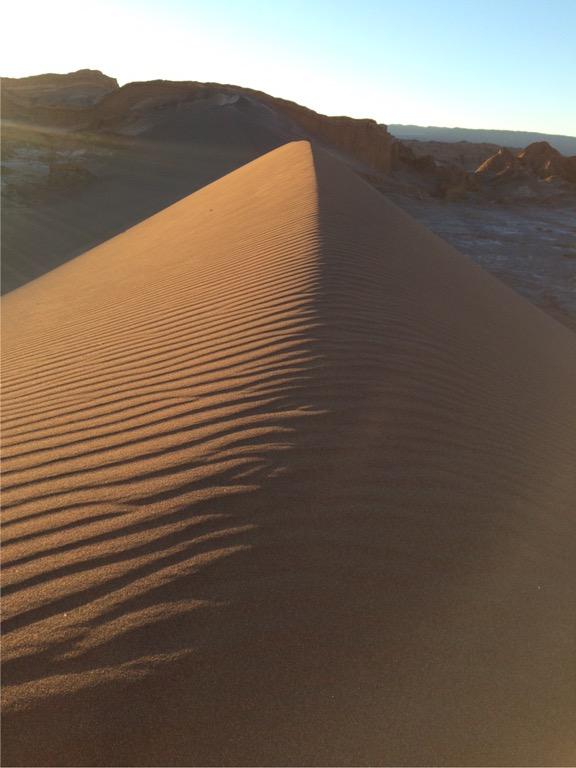 img 3871 3 - In die Wüste