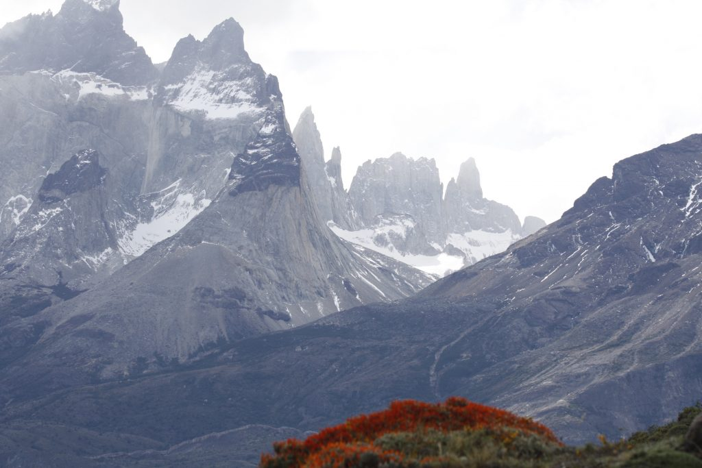 IMG 2128 1024x683 - Best of Chile ist Qual der Wahl und Flamingo extra