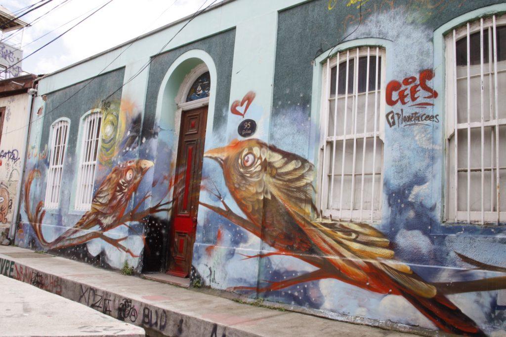 IMG 2142 1024x683 - Best of Chile ist Qual der Wahl und Flamingo extra