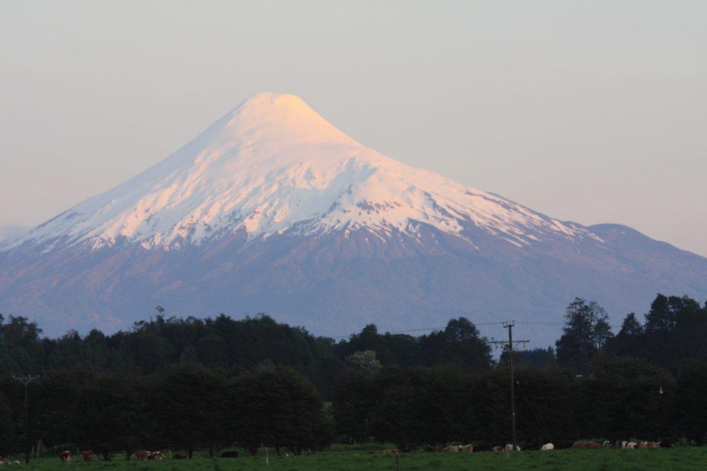 IMG 2187 1024x682 - Best of Chile ist Qual der Wahl und Flamingo extra