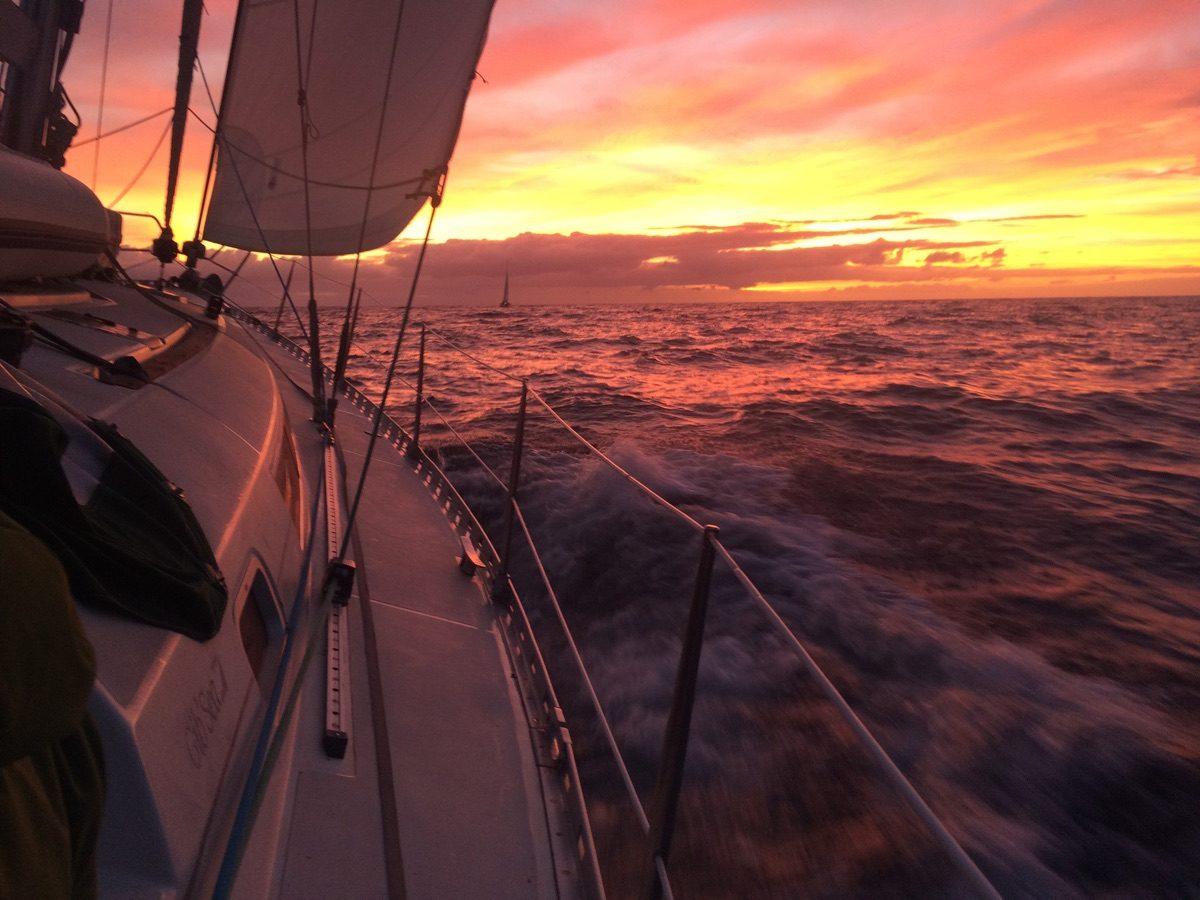 IMG 4610 1200x900 - Wale und Wind auf den Kanaren