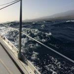 IMG 7714 150x150 - Schönes Küstensegeln