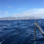 IMG 7737 150x150 - Wale und Wind auf den Kanaren