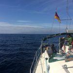 IMG 7793 150x150 - Wale und Wind auf den Kanaren