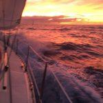 IMG 7910 150x150 - Wale und Wind auf den Kanaren