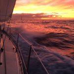 IMG 7912 150x150 - Wale und Wind auf den Kanaren