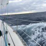 IMG 7963 150x150 - Wale und Wind auf den Kanaren