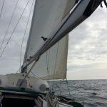 IMG 7976 150x150 - Wale und Wind auf den Kanaren