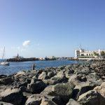 IMG 7991 150x150 - Hafentag in Porto Mogan