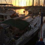 IMG 8623 e1485261286595 150x150 - Hafentag in Porto Mogan