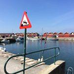 IMG 5985 150x150 - Rund Bornholm
