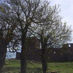 IMG 6024 150x150 - Rund Bornholm