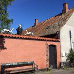 IMG 5931 150x150 - Angekommen in Rønne auf Bornholm